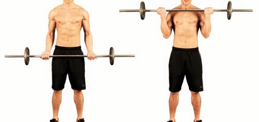 Barbell Bicep Curl-how to increase biceps size